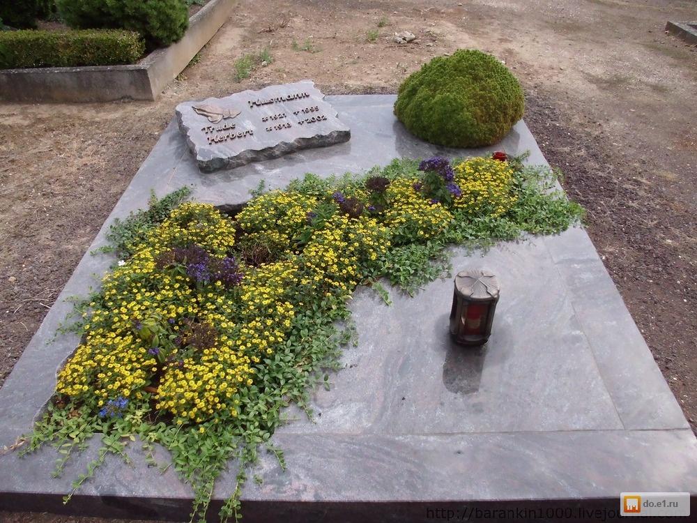 Можно ли на кладбище сажать цветы из своего сада