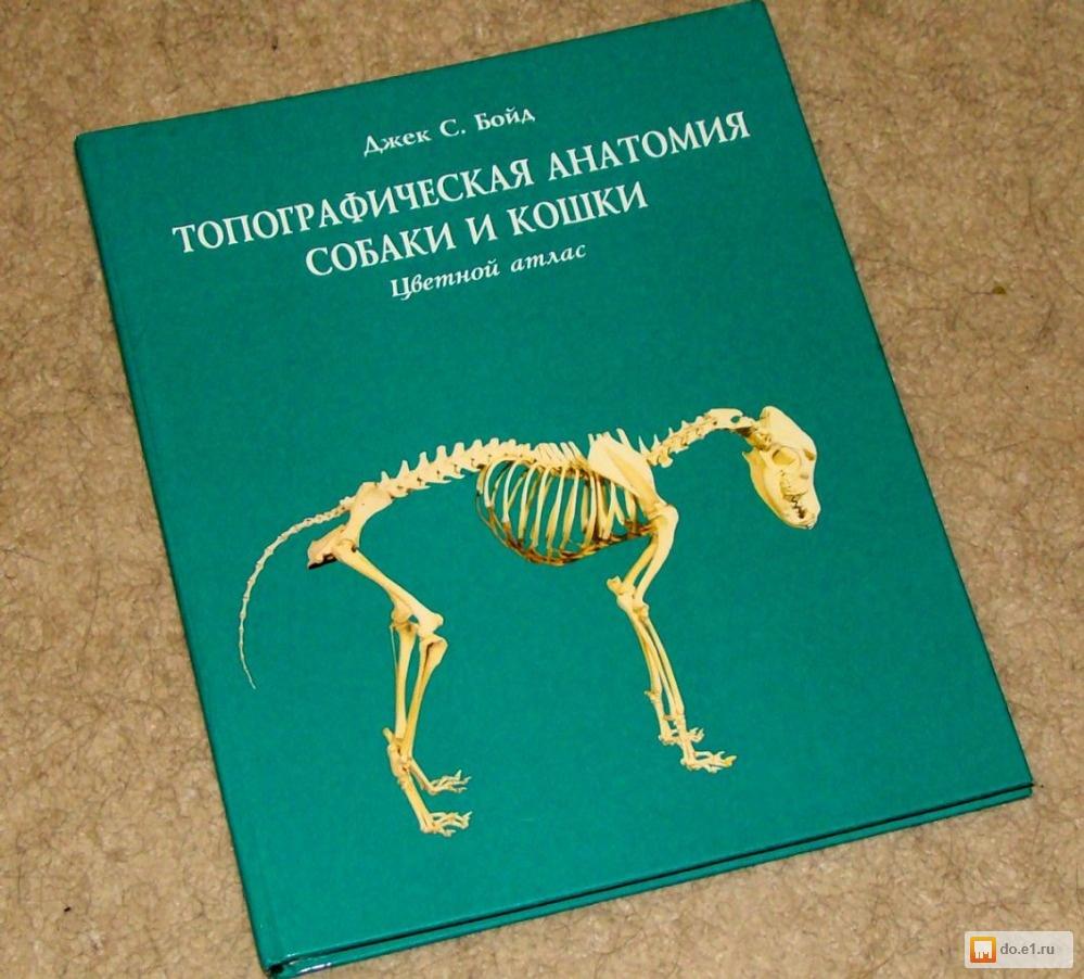 список всех книг об анатомии собаки наглядности простоты
