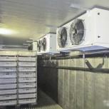 Морозильные холодильные агрегаты шоковая заморозка, Екатеринбург