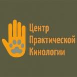 Воспитание щенка, Послушание для всех пород собак, ОКД, Екатеринбург