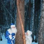 Дедушка Мороз и Снегурочка, Екатеринбург