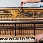 Настройка и ремонт пианино, роялей, Екатеринбург