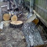 Уборка деревьев с участков, из дворов, Екатеринбург