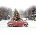 Поздравление Деда мороза, Екатеринбург