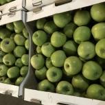 Продаю яблоки свежие сорт Гренни смит, Екатеринбург