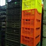 Продам овощные ящики б/у целые, Екатеринбург