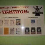 Детская Школа Гимнастики, Екатеринбург
