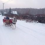 Конные прогулки на лошадях и пони, Екатеринбург