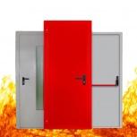 Противопожарные двери металлические глухие однопольные EI 60 2050-780, Екатеринбург