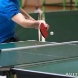 Индивидуальные занятия с мастером спорта по н/теннису, Екатеринбург