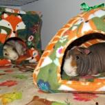 Домики, леданки, подушки для любого животного, Екатеринбург