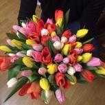Уральские тюльпаны, Екатеринбург