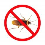 Уничтожение тараканов, Екатеринбург