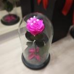 Вечная роза в колбе, Екатеринбург
