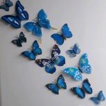 Бабочки на магнитах, Екатеринбург