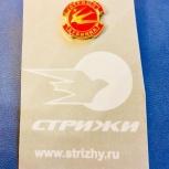 Значок пилотажной группы «Стрижи» (новый), Екатеринбург
