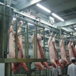 Линия по переработке мяса, Екатеринбург