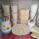 Молочные продукты, Екатеринбург