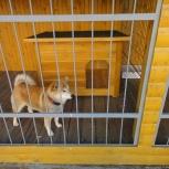 Купить будку для собаки утепленную, Екатеринбург