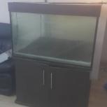 продам Б/У аквариум 600 литров. жили пираньи паку, Екатеринбург