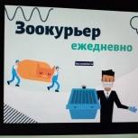 Зоокурьер в Москве и Екатеринбурге, не путать с зоотакси., Екатеринбург
