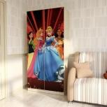 Шкаф 2-х створчатый Принцесса (ВМ), Екатеринбург