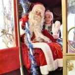 Дед Мороз, новый год, новогодние елки, Екатеринбург