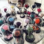 Подарки к 8 марта-мишки из роз,розы в колбе,долговечные букеты, Екатеринбург