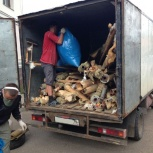 Вывоз мусора бытового,вывоз мебель,вывоз хлама. Вывоз мусора!вывоз тбо, Екатеринбург