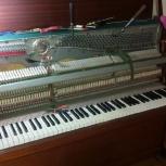 Настройка пианино, рояля, Екатеринбург