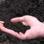 Торф,чернозем, суглинок, грунт, строи бой скальный грунт, Екатеринбург