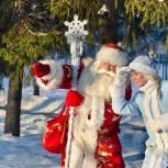 Дедушка мороз и снегурочка на дом !, Екатеринбург