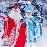 Дед Мороз и Снегурочка у Вас в гостях, вызов, Екатеринбург
