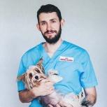 Ветеринар на дом, Екатеринбург