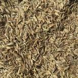 Семена газонной травы, Екатеринбург