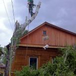 Спиливание деревьев и обрезка веток, Екатеринбург