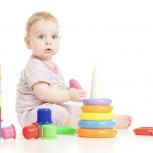 Действующий интернет-магазин игрушек с прибылью 60000 чистыми, Екатеринбург