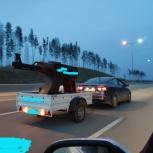 Мангал (жаровня), на колесах, Екатеринбург