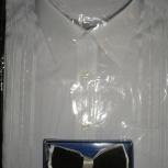 Новая классическая рубашка, Екатеринбург