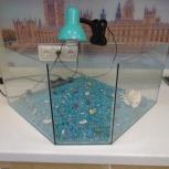 Продам террариум для водных красноухих черепах, Екатеринбург