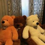 Огромный плюшевый медведь, Екатеринбург