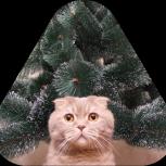 Искусственная елка с подароком на выбор, Екатеринбург