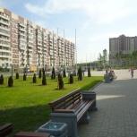 Семена газонных трав для городского озеленения, Екатеринбург