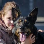 Пес Сева ищет хозяина!, Екатеринбург