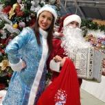 Дед Мороз и Снегурочка - нестандартное поздравление - под гармонь!, Екатеринбург