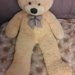 Плюшевый медведь, Екатеринбург