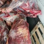 мясо говядина, Екатеринбург