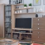Гостиная Нота-16 со шкафом (SV), Екатеринбург