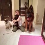Дрессировка собак!, Екатеринбург