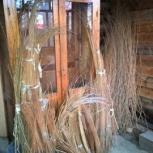 Прутья лозы разной длины для плетения изделий, Екатеринбург